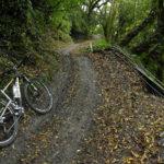 mtb-trailovani-v-horach-taiwanu-poprve-na-nangao-trail_0004