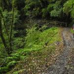mtb-trailovani-v-horach-taiwanu-poprve-na-nangao-trail_0005