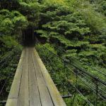 mtb-trailovani-v-horach-taiwanu-poprve-na-nangao-trail_0007