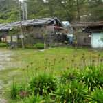 mtb-trailovani-v-horach-taiwanu-poprve-na-nangao-trail_0011