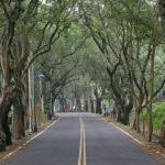 mtb-trailovani-v-horach-taiwanu-poprve-na-nangao-trail_0024